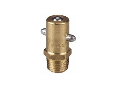 Vetnippel 1/8'' Messing BSP PF Pin Type