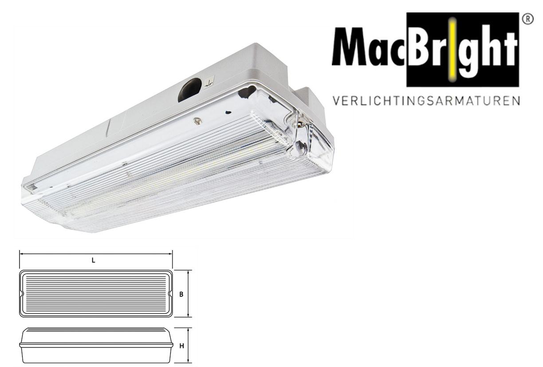 TEC LED N 4W 350lm 840 IK08 wit