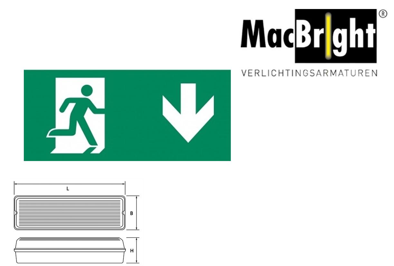 TEC pictogram-D man pijl beneden