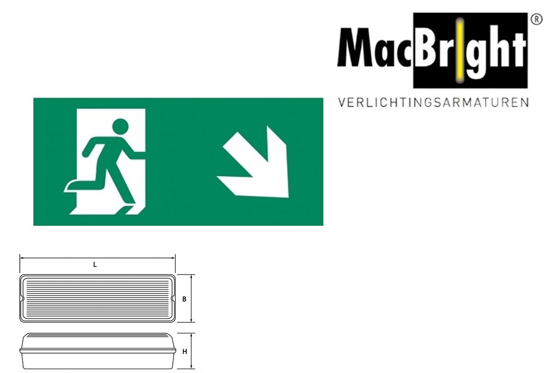 TEC pictogram-E man trap af rechts