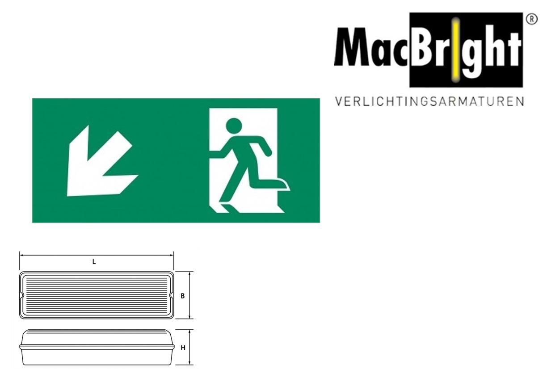 TEC pictogram-G man trap af links
