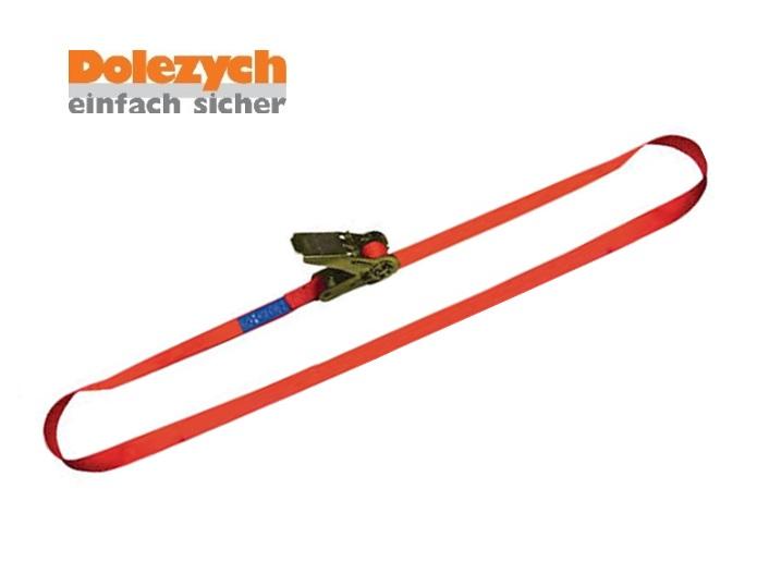 Spanband polyester eendelig met palwerk 4m/25mm 700daN Din 12195-2