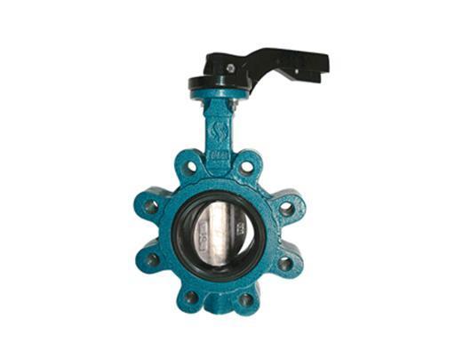 Vlinderklep LUG GG25 klepblad RVS | DKMTools - DKM Tools
