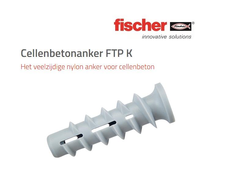 Cellenbetonanker FTP K | DKMTools - DKM Tools